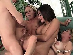 Foursome, Orgasm, Nicole aniston neighbor affair free download