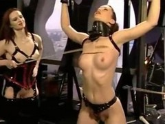 Bdsm, Domination, Group, Femdom, Domination pissing shemale