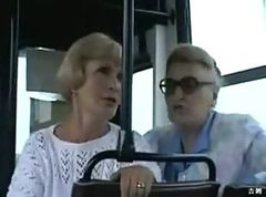 Bus, Public, Webcam public
