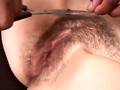 Bus, Hairy, Shaving, Video porno asian brutal head shaved gambang