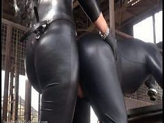 Latex, Strapon, Dildo, Group bears leather fucking moonee