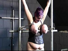 Bdsm, Tied, Big Tits, Tied sucked
